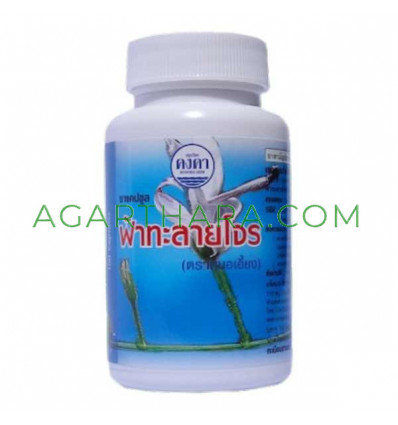 Capsules Fah Talai Jone treatment of colds, 100 pcs